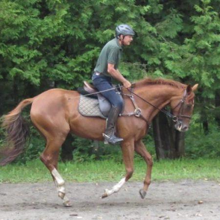 6 raisons pour lesquelles l'équitation est excellente pour la santé
